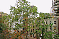 View at 166 East 61st Street