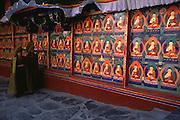 Tibet monastery and monks