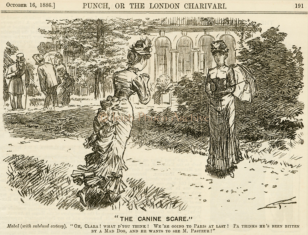 'Man who thinks he has been bitten by a mad dog is going to Paris to be inoculated against Rabies by Pasteur is taking his family with him, to the delight of his daughter. Cartoon from ''Punch'', London, 1886.'