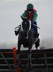 Shannan Star ridden by Kieran Edgar Aspen Waite R & D Introducers Mares' Handicap Hurdle (Class 5) (4YO plus) - Photo mandatory by-line: Harry Trump/JMP - Mobile: 07966 386802 - 17/02/15 - SPORT - Equestrian - Horse Racing - Taunton Racecourse, Somerset, England.