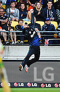 Daniel Vettori takes a one handed catch to dismiss Samuels during the ICC Cricket World Cup quarter final match between New Zealand Black Caps and the West Indies, Wellington, New Zealand. Saturday 21March 2015. Copyright Photo: Andrew Cornaga / www.Photosport.nz
