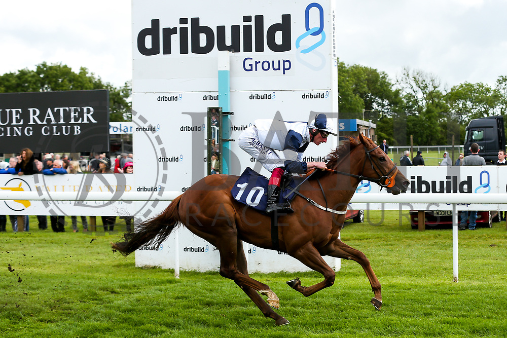 Adam Kirby on STAR ALEXANDER (trained by Clive Cox) wins the 1420 British EBF Fillies' Novice Stakes during Ladies Day at Bath Racecourse - Rogan/JMP - 15/06/2019 - HORSERACING - Bath Racecourse - Bath, England.