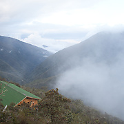 Wayqecha Cloud Forest Biological Station on the Eastern slopes of the Peruvian Andes. Cloud forest at 2950 meters elevation. The reserve is managed by the Amazon Conservation Association and the Asociación para la Conservación de la Cuenca Amazónica.