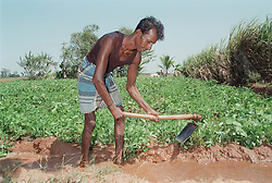 Indian farm worker affected by stroke; member of selfhelp group supported by charity ADD India; irrigating crops using digging implement,