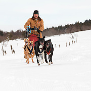Dog sled training on Col de Béal,
