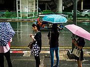 19 JULY 2018 - BANGKOK, THAILAND: People on Silom Road under umbrellas during a monsoon rain in Bangkok.     PHOTO BY JACK KURTZ