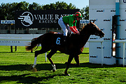 Unbridled Light ridden by John Fahy and trained by Anthony Honeyball in the Sds/Ebf Novice Auction Stakes (Plus 10 Race) race.  - Ryan Hiscott/JMP - 14/09/2019 - PR - Bath Racecourse - Bath, England - Race Meeting at Bath Racecourse