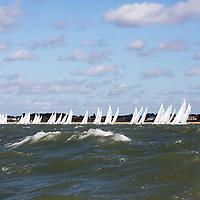 8/9/16 Race Day 4 Fleet shots