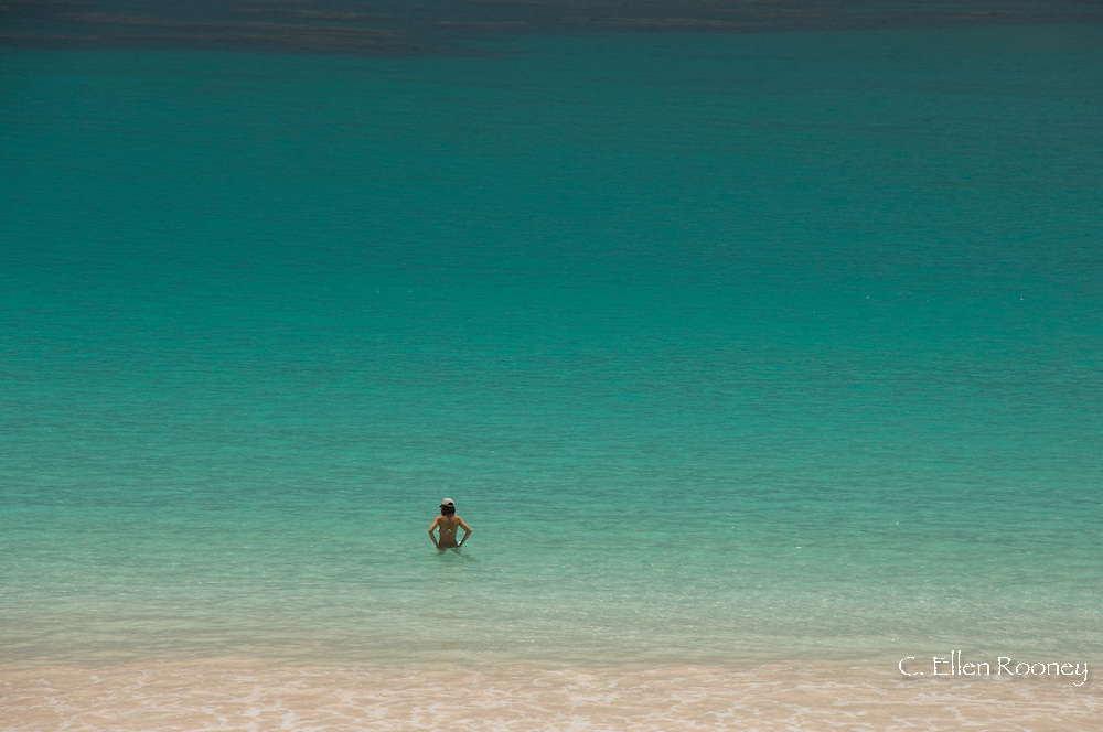 A woman in the sea at Pink Sands Beach, Harbour Island, The Bahamas