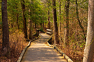 A nature trail and wooden bridge in the woods