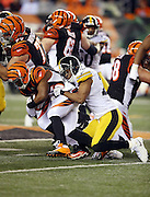 CINACTIONVERBS during the NFL AFC Wild Card playoff football game against the Pittsburgh Steelers on Saturday, Jan. 9, 2016 in Cincinnati. The Steelers won the game 18-16. (©Paul Anthony Spinelli)
