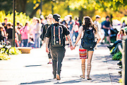 UNT Campus Stock Images, November 2016