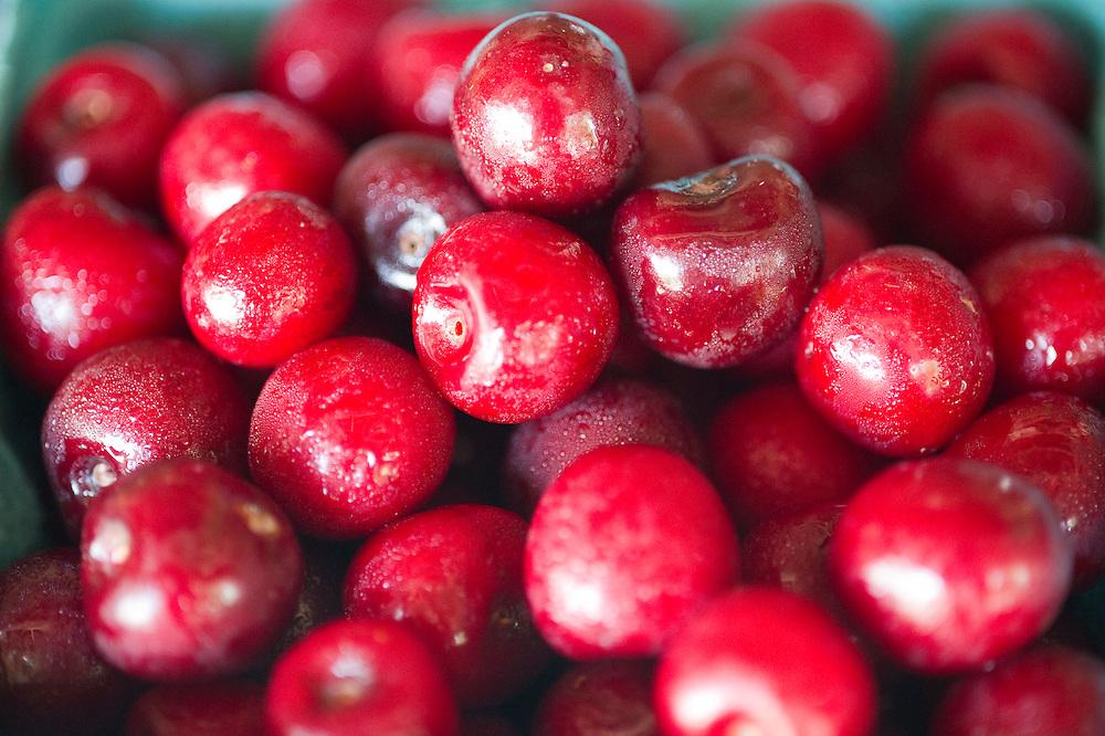 Cherries in PA