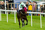 Heer We Go Again ridden by Rossa Ryan and trained by David Evans in the CB Protection Novice Median Auction Stakes.  - Ryan Hiscott/JMP - 06/05/2019 - PR - Bath Racecourse- Bath, England - Kids Takeover Day - Monday 6th April 2019