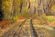 Fall color and train tracks, Cumbres & Toltec Scenic Railroad, Chama, New Mexico USA