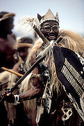 Mayeza, the Zulu induna celebrating victory at a reinactment of the battle of Isandlwana in Zululand. South Africa