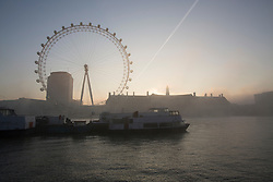 © licensed to London News Pictures. London, UK 19/02/2013. The London Eye pictured with fog in the morning of Tuesday 19 February 2013. Photo credit: Tolga Akmen/LNP