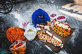 India: Jaisalmer to Darjeeling Color