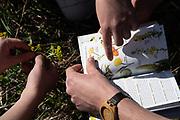 Bio Blitz Ridges, Museuem, Science, Nature, Studetns, Faculty, Community Engagement