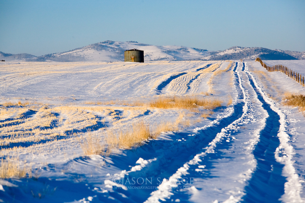 Cold winter morning near Helena, Montana.