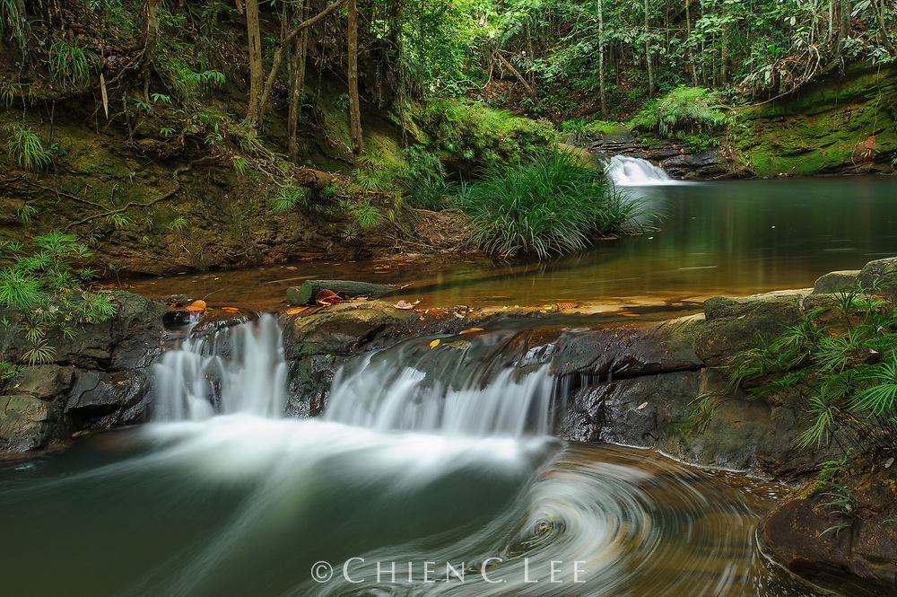 A stream cascades over sandstone layers in Lambir Hills National Park. Sarawak, Malaysia.
