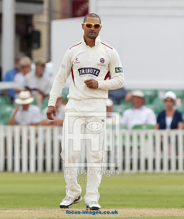Alviro Peterson of Somerset County Cricket Club during the LV County Championship Div One match at the County Ground, Taunton, Taunton<br /> Picture by Tom Smith/Focus Images Ltd 07545141164<br /> 02/07/2014