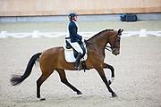 Natascha Veen - Damoiselle<br /> KNHS Indoorkampioenschappen 2018<br /> © DigiShots