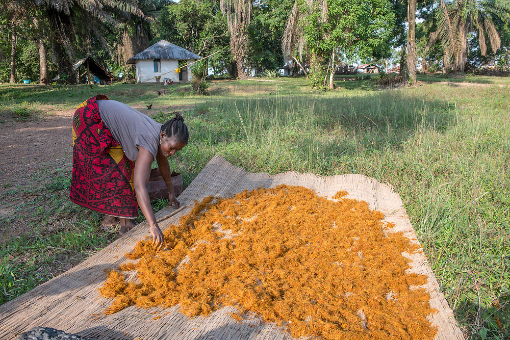 A woman spreads a blanket to dry palm (Arecaceae) pulp in Ganta, Liberia