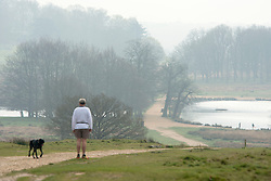 © Licensed to London News Pictures. 02/04/2014. Richmond, UK. A man pauses to look at the view with a dog. Visitors to Richmond Park had low visibility today April 2nd 2013. High levels of air pollution are set to spread across England and are expected  to get worse. Photo credit : Stephen Simpson/LNP