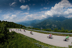 Peloton at Livsek Ravne during Stage 3 from Skofja Loka to Vrsic (170 km) of cycling race 20th Tour de Slovenie 2013,  on June 15, 2013 in Slovenia. (Photo By Vid Ponikvar / Sportida)