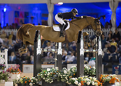 Foster Tiffany (CAN) - Southwind VDL<br /> Winter Equestrian Festival<br /> Wellington - Florida  2013<br /> © Hippo Foto - Cealy Tetly