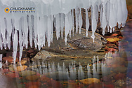 Ice formations along Lake McDonald in Glacier National Park, Montana, USA