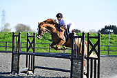 22 - 21st Apr - Show Jumping