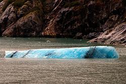 Iceberg, Tracy Arm Fjord, Tracy Arm-Fords Terror Wilderness, Alaska, United States of America