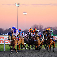 Kempton 18th January