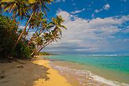 Coral cost lagoon off the coral coast road. Fiji