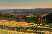 Looking southwest towards the Blackdown Hills from the Quantock Hills, near the Triscombe Stone.