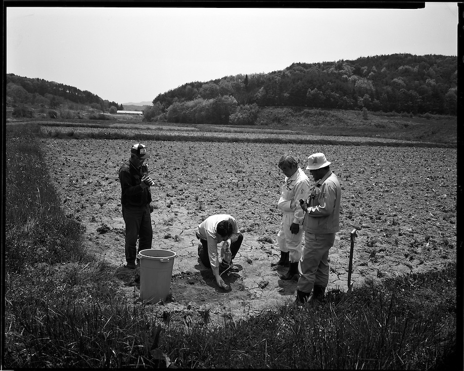 Taking samples of Radioactive soil form  Katsuzo Shoiji's rice field Levels of more then 10  micro sieverts are still present more than 60 days after the  march 15 explosions and fire at  Daiichi Nuclear power plants 40km away  Katsuzo Shoji's (75) family has worked   this land for  more then 6 generations Like the rest of the town's population  he is being forced to evacuate most likely to an apartment 20km away.  uncertain when he will be able to return he has been able to rent some land to continue his work  outside of the  heavily  contaminated village.  the  Fukushima Daiichi nuclear power plant, about 40km away.  Outside the 20km government exclusion zone, the village's mountainous topography  funneled radiation spewing from its crippled reactors trapping it there, poisoning crops , water and livestock.  he has  been told  he must  destroy his crops and  his six prized  Iitate beef cows must be killed.