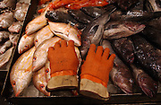 Fish and gloves at the Fulton Fish Market in Manhattan, NY. 2/7/2005