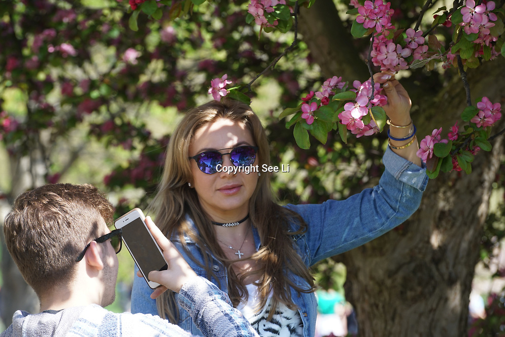 London,England,UK.9th April 2017. Tourists enjoy sunshine, sunbathe and eating ice-cream in St James Park, London,UK. by See Li
