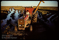 Tractor lugs grain cart of rice thru waterlogged field during harvest; GB, Rio Grande do Sul. Brazil
