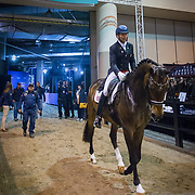 Steffen Peters (USA) and Rosamunde at the FEI World Cup Dressage Finals in Omaha, Nebraska.
