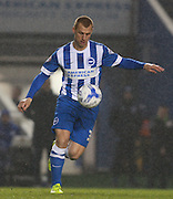 Brighton midfielder Steve Sidwell  during the Sky Bet Championship match between Brighton and Hove Albion and Sheffield Wednesday at the American Express Community Stadium, Brighton and Hove, England on 8 March 2016. Photo by Bennett Dean.