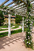 Rose garden and trellis at Parc de la Tete d'Or, Lyon, France (UNESCO World Heritage Site)
