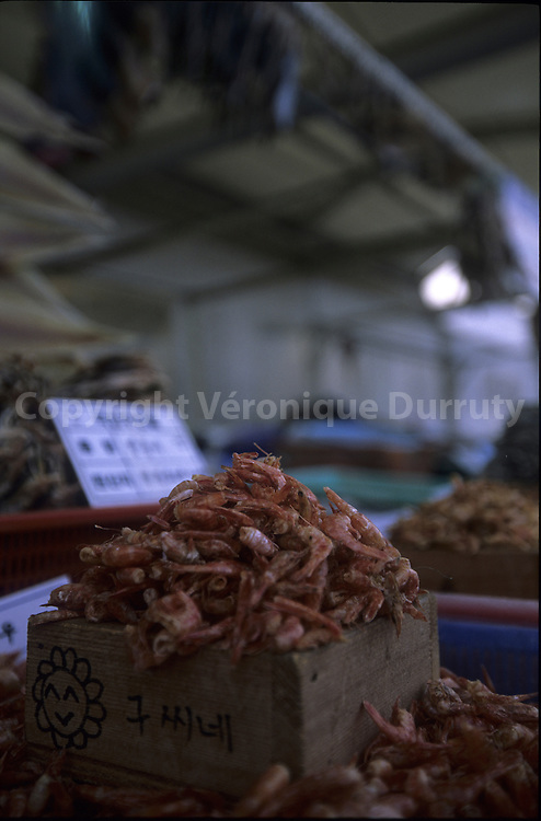 SHRIMPS IN A FISH MARKET, YEONGYIONG ISLAND, SOUTH KOREA