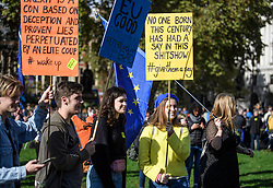 © Licensed to London News Pictures. 19/10/2019. London, UK. Pro EU demonstrators gather outside The Houses of Parliament in Westminster, London on the day that Parliament will vote on a new agreement between UK government and the EU over Brexit. Parliament is sitting on a Saturday for the first time since 1982. Photo credit: Ben Cawthra/LNP
