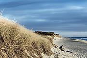 Sunrise solitude, Wellfleet, Cape Cod, Massachusetts, USA