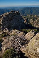 Rocky landscape at Roc Du Caroux/Parc naturel regional du Haut-Languedoc/Caroux/France