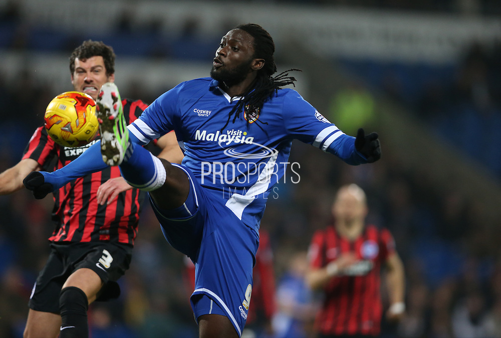 Kenwyne Jones during the Sky Bet Championship match between Cardiff City and Brighton and Hove Albion at the Cardiff City Stadium, Cardiff, Wales on 10 February 2015.