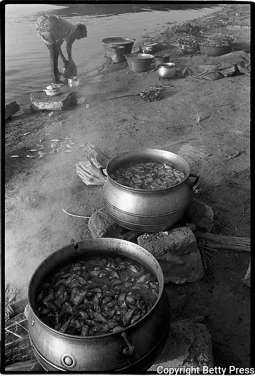 Each day that goes by and I am okay is a feast.  North African proverb<br />